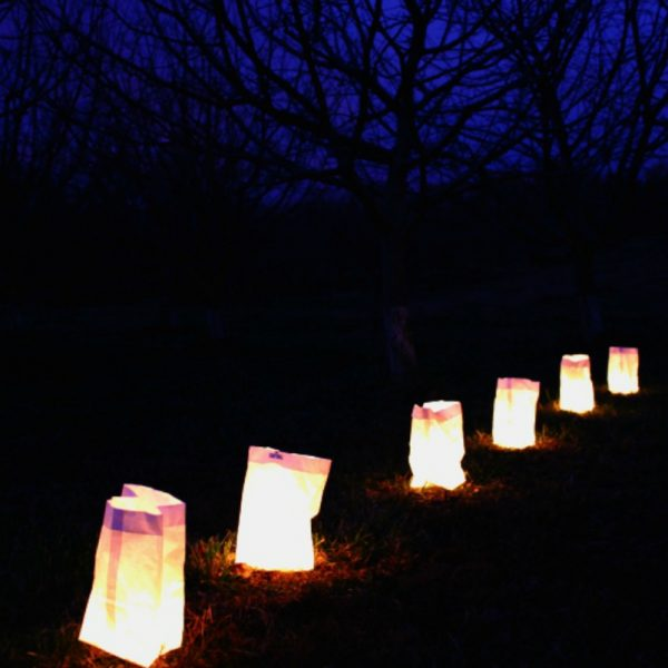 Orchard by Candlelight Luminarias